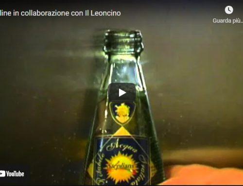 Step-line in collaborazione con Il Leoncino